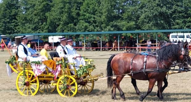 ZLATNE GRIVE ZLATNE DOLINE U Mihaljevcima održane tradicionalna konjogojska izložba i revijalna utakmica u vožnji zaprega