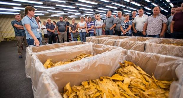 Hrvatski duhani najavili nastavak trenda povećanja otkupne cijene