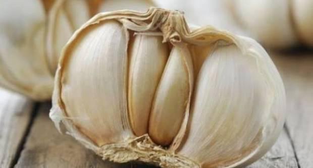 Listopad je idealan za sadnju češnjaka