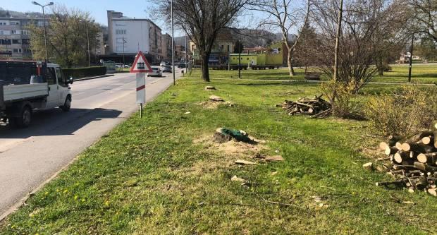 Stabla u Požegi su srušena zbog rekonstrukcije D38 i pripreme za izgradnju kružnih tokova