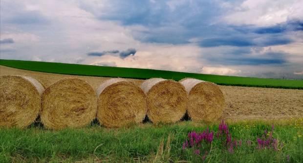 U natječaju ʺVolim svoju županijuʺ najviše lajkova prikupila fotografija iz naše županije!