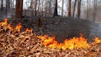 Gorjelo po cijeloj županiji: Devet požara u dva dana!