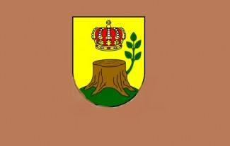 Rezultati izbora za općinskog načelnika Općine Čaglin