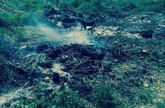 Gorio divlji deponij smeća