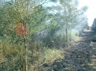 Zapalila se šikara iznad Frkljevaca, jedna osoba ozlijeđena