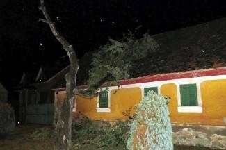 Vjetar srušio drvo na kuću 90-godišnjakinje, oluja nosila štandove (foto)