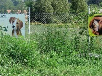 Teški dani za Udrugu Sirius: Napuštenih životinja sve više, Park za pse postao džungla (foto)