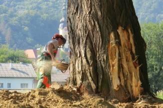 Ruše trula stabla: Požega dobiva još jednu šetnicu uz Orljavu (foto)