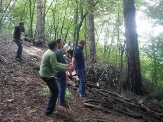 Čiste okoliš na Lapjaku i Trišnjici i pripremaju drva za zimu