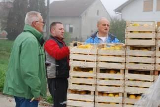 Podijeljeno 23 tone mandarina: Vitaminske donacije dobili vrtići, škole, udruge i bolnica