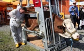Poljoprivreda u kolapsu: U dvije godine ugašeno 300-tinjak OPG-a