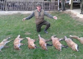 Ulovili sedam lisica: ¨Ovo je rekord društva u 25 godina, koliko sam ja lovac¨