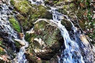 Prirodne ljepote na 10 minuta od centra Požege