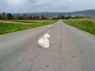 Uslikao čitatelj: Vreće pune smeća bačene na cestu