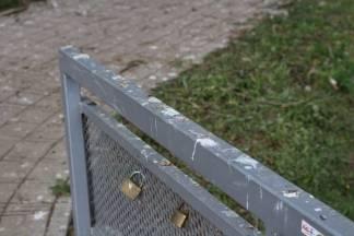 Vrane u parku ¨bombardiraju¨ prolaznike