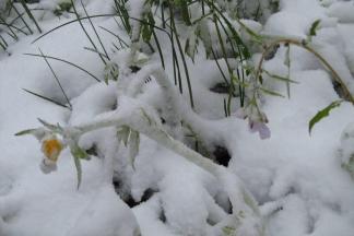 Za vikend uz vrlo niske temperature, moguć i snijeg