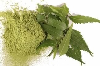 Ljekoviti recept: neem, prirodni lijek star 5000 godina