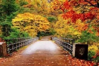 Danas je kalendarski prvi dan jeseni