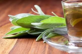 Zašto trebamo piti čaj od kadulje?
