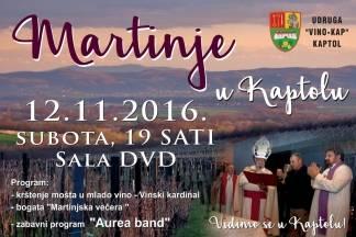 Martinje u Kaptolu 12.11.2016.