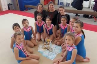 Požeške gimnastičarke osvojile zapažene rezultate na natjecanju u Vukovaru