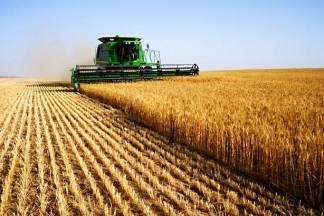 U utorak, 18.4., počinje isplata milijarde kuna potpore poljoprivrednicima