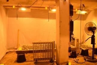 Podrum sa skrivenim ulazom preuredili u sofisticiran laboratorij za uzgoj marihuane