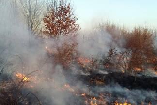 Upozorenje građanima koji spaljuju korov