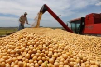 Tržište soje raste velikim stopama !!