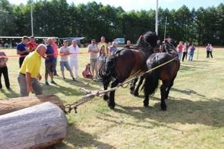 Natjecanje radnih konja u povlačenju trupaca, da ili ne ?!