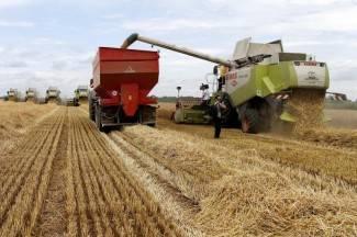 Lipički poljoprivrednici očekuju rekordne prinose