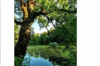 Ljepote Jankovca u ljetnim mjesecima