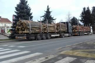 ¨Zbog nepropisno parkiranih kamiona djeca svakodnevno ugrožavaju živote prilikom prelaska ceste¨