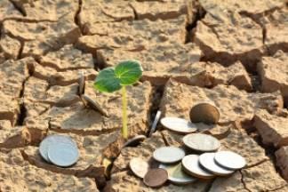 EU novcem obnovite zemljište - prijave od danas!