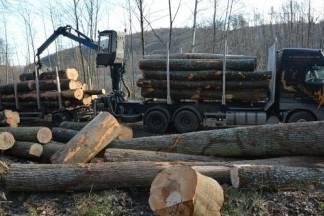 Provalili u radni stroj ¨Hrvatskih šuma¨ i ukrali gorivo