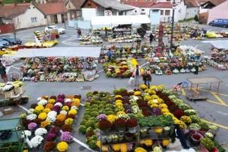 Započela prodaja cvijeća iza Gradske kuće