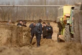 Radnika na farmi samljela drobilica za stočnu hranu