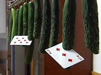 Kinez igraćim kartama siječe povrće