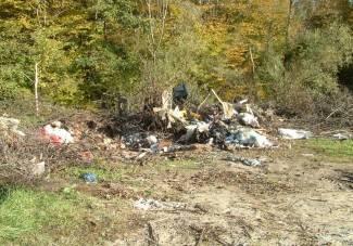 Nedaleko stoji kontejner, ali draže im je bacati smeće u šumu
