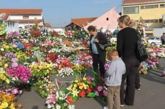 Požega: Sajam cvijeća iza gradske kuće