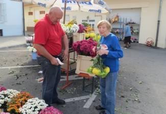 Požežani ni ove godine ne štede na cvijeću, ali osjeti se recesija
