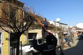 Radnici Tekije iskoristili lijepo vrijeme za uređenje drvoreda