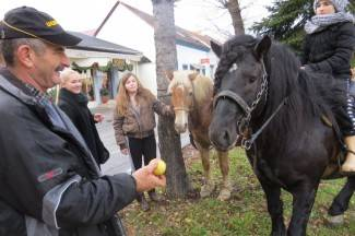 Kao u westernu: Konji odmaraju, gazde na piću