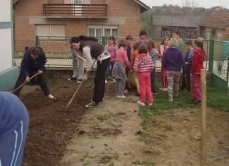 Roditelji i učenici posadili čemprese i ruže oko škole (foto)