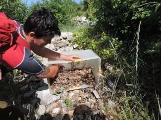 Djelatnici Parka prirode Papuk u akciji spašavanja ivanjskog rovaša