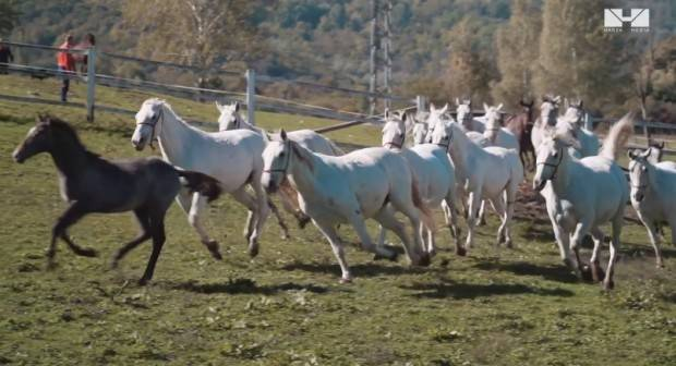 Lipik u novom promotivnom videu Hrvatske turističke zajednice