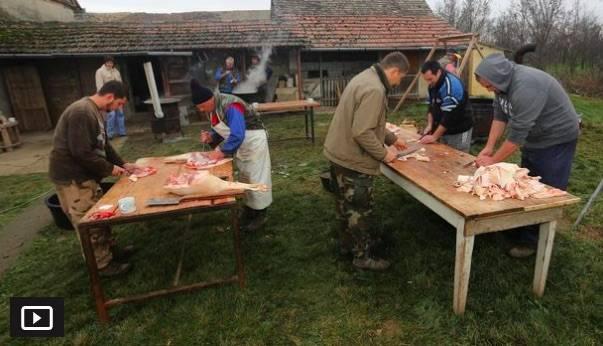 POČELA SEZONA KOLINJA: Marijan iz Grabarja kaže da će kulen napravljen s ljubavlju preživjeti i ovu krizu