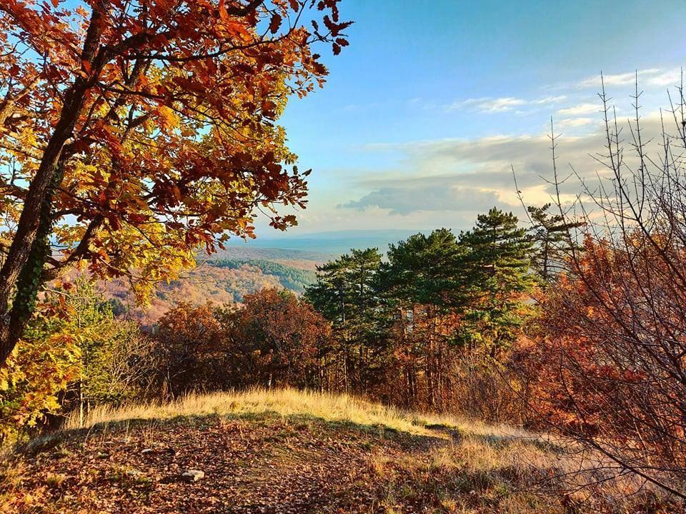 FOTKA DANA: Jesen na Papuku iznad Velike