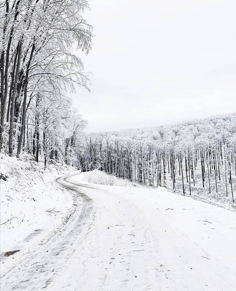 Cesta Velika- Jankovac još uvijek zatvorena za sav promet