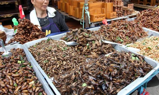 EU dala zeleno svjetlo za crve u jelu! Hoćete li ih probati?
